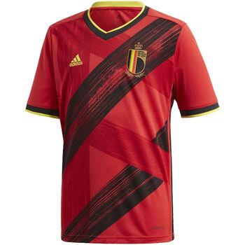 Belgien RBFA H JSY Y