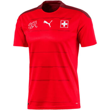 Schweiz SFV Home Shirt Replica