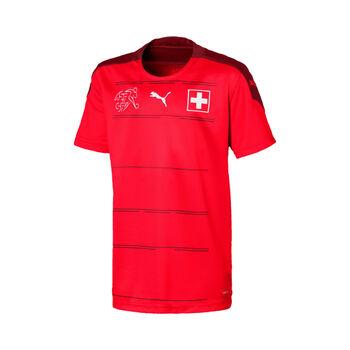 Schweiz SFV Home Shirt Replica Jr