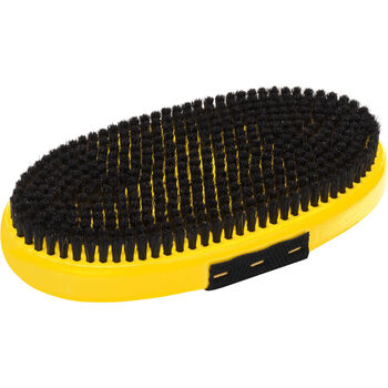 Base Brush oval
